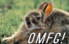 omfg1