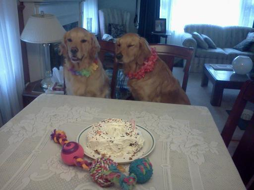 Chloe's 2nd birthday!