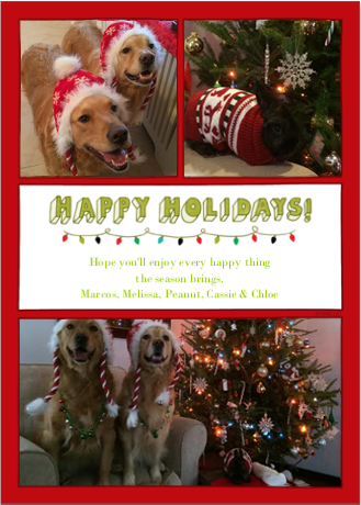 Christmas Card 2013 V.2