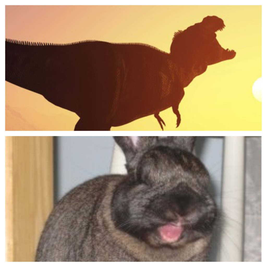 Peanut and a T-Rex